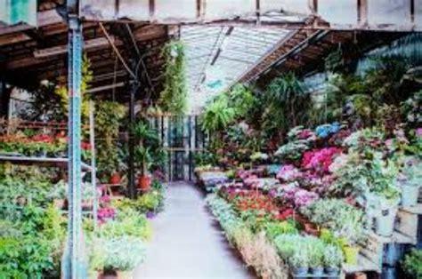 mercato dei fiori napoli pompei trasferimento mercato dei fiori manca l ok