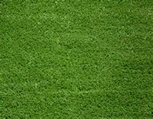 Grass Floor Mats India Artificial Grass Mats In Bengaluru Karnataka India