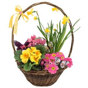 Spring basket of flowers pictures photos and images for facebook
