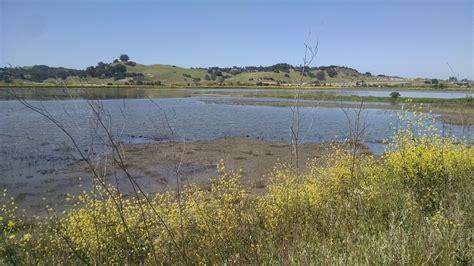 shollenberger park loop california alltrails com