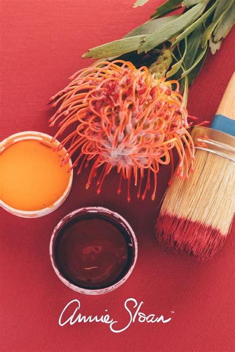 25 best burgundy colour ideas on