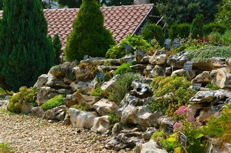 a rock garden alpines rock gardens