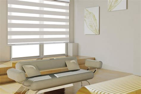 Zebra Print Home Decor by Neolux Dual Shades Sheer Vision Modern Roller Shades