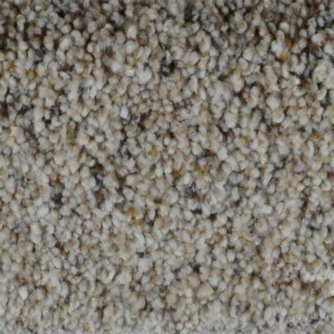 home decorators carpet home decorators collection carpet reviews decoratingspecial com