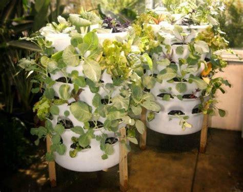 stylish systems    organic vegetable garden