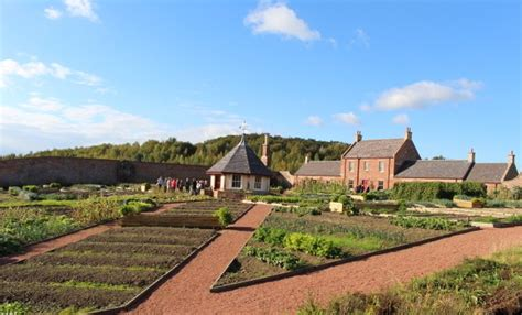 Welcome To The Fascinating World Of The Walled Kitchen Walled Garden Network