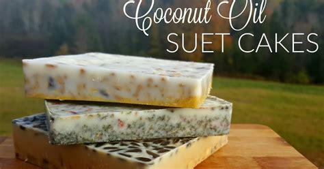 coconut oil suet cakes for chickens or wild birds fresh