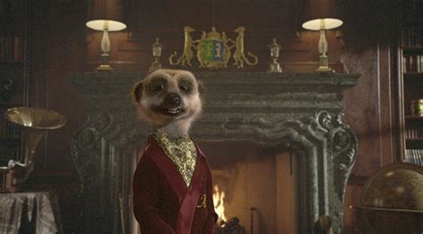 Compare The Market Insurance by Meerkat Doubles His Fortune And Buys 163 60million