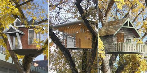 tree houses for rent tree houses for rent design of your house its good idea for your life