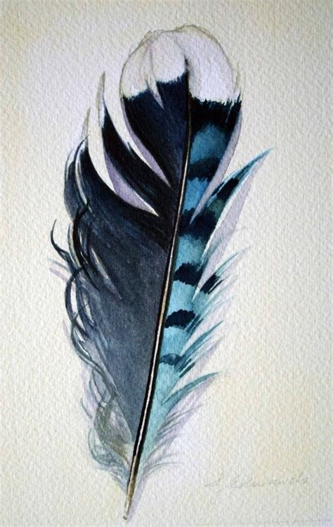 tattoo feather jay watercolor of a blue jay feather feather tattoos