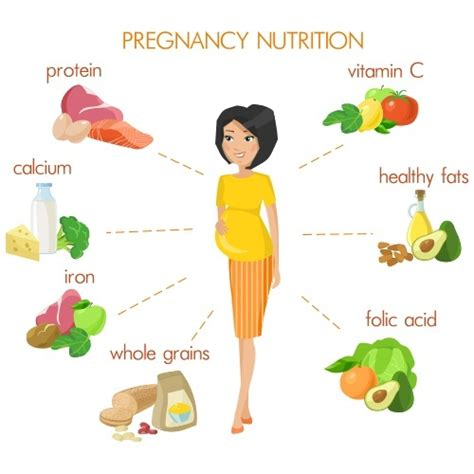 healthy fats and pregnancy what is the best diet plan for pregnancy quora