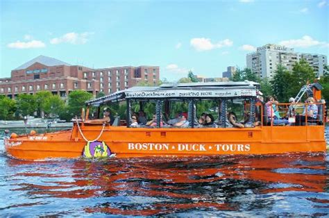 duck boat tours denver duck tours on the charles river picture of marriott