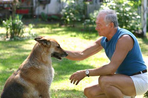 hombre perro se desata hombre perro 2 edition books el perro fue domesticado por el hombre 20 000 a 241 os antes