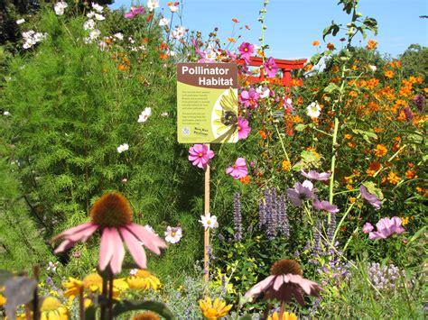 Bee Garden Flowers Planting A Bee Garden Gardens At Lake Merritt