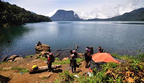 Raflesia Madu taman nasional kerinci seblat terbesar di sumatera