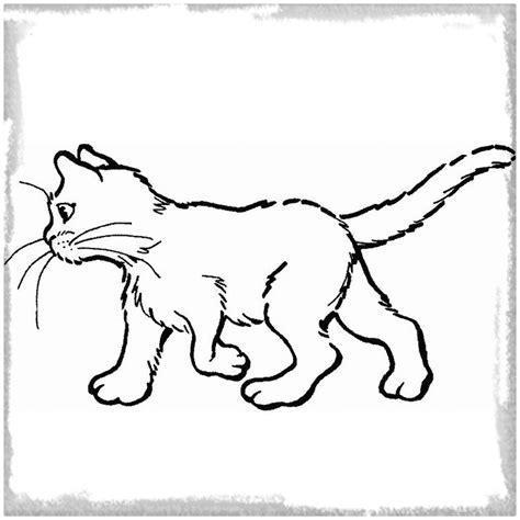 imagenes para colorear gatitos dibujos de gatitos tiernos para colorear archivos