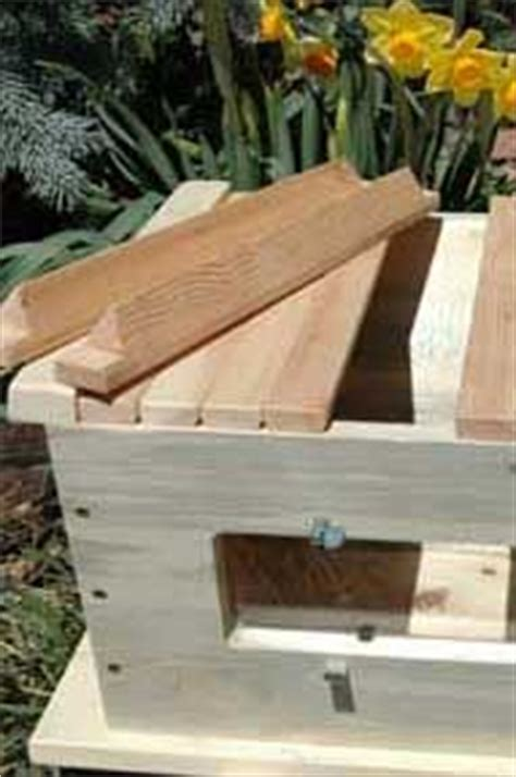 golden mean top bar hive what those triangular top bars look like top bar bees