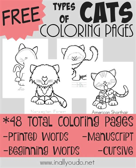 types of cat coloring types of cats coloring pages free in all you do