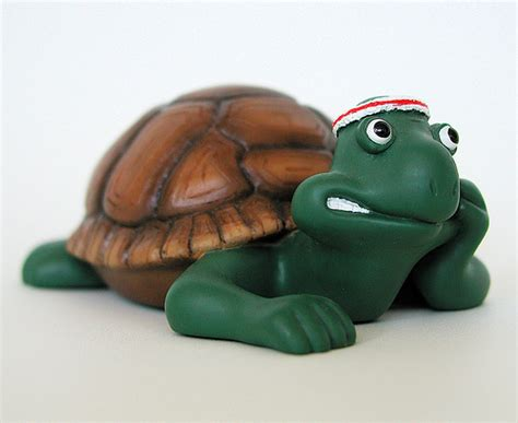 creature comforts tortoise frank collectible world s creature comforts figurine frank the