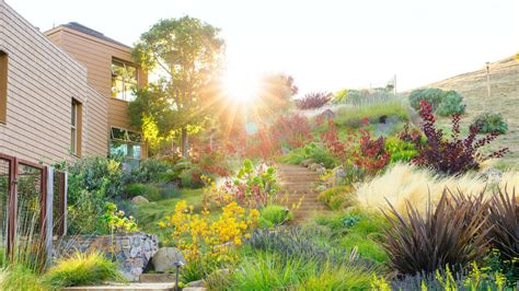 Southern Style House landscaping without grass sunset