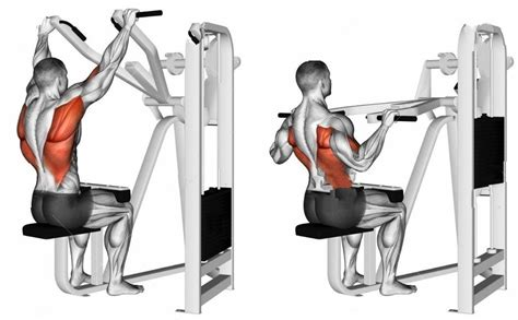 machine lat pulldown exercise bodybuilding wizard
