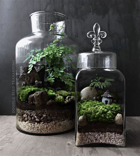 mini landscape terrariums garden terrarium plants