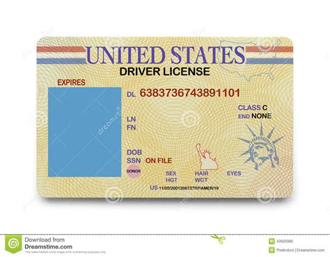 blank driver license stock photo image