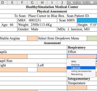 Building Healthcare Simulation Documents Using Excel Tips And Tricks Healthy Simulation Ehr Needs Assessment Template
