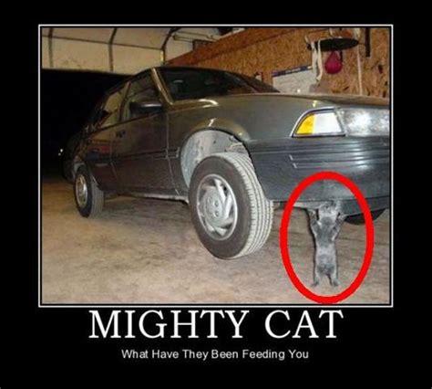 Funny Truck Memes - race car memes funny