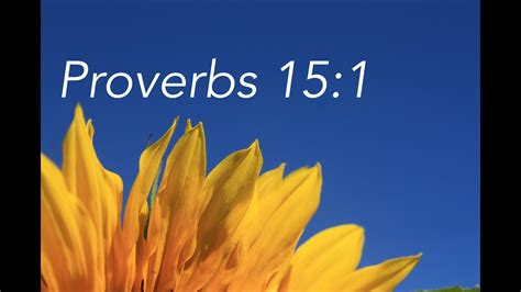proverbs   bible memory verse song  children