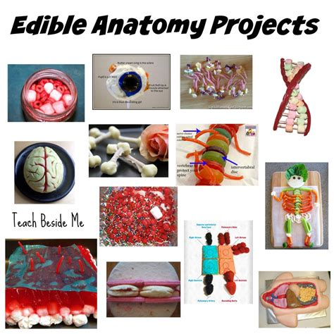 Big Kitchen Ideas by 100 Edible Education Projects Teach Beside Me