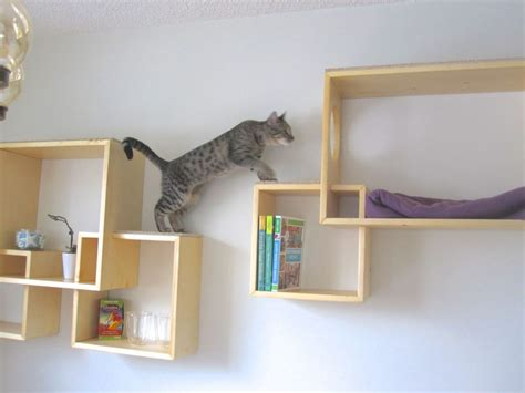 wall shelves playgorund for cats home decorating trends