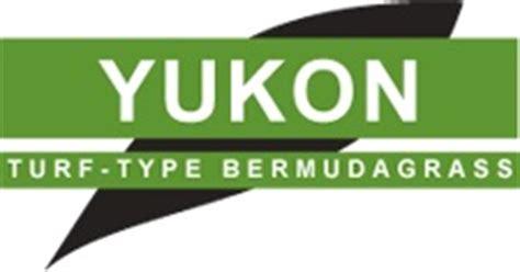 sod grass fake gr steep yard standard yukon bermuda seed lowes how