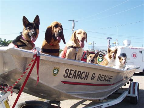 troubled waters montana rescue montana dogs search and rescue distinctly montana magazine