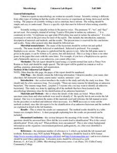 General Essay Writing by Essay Writing General Topics Worksheet Printables Site