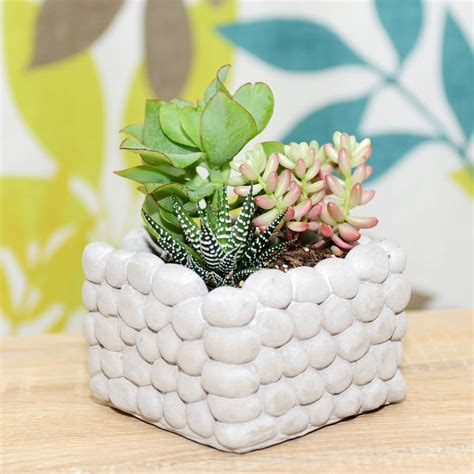 concrete piled pebble planter by dingading terrariums