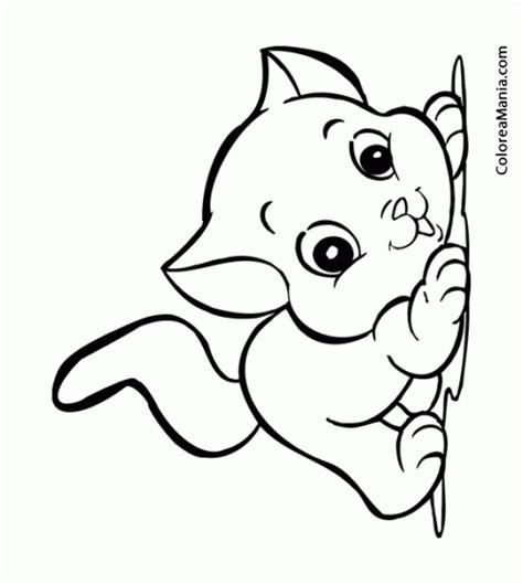 imagenes infantiles gatos colorear gato juguetn infantil animalitos dibujo para