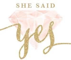 she said yes new zealand wedding planning advice
