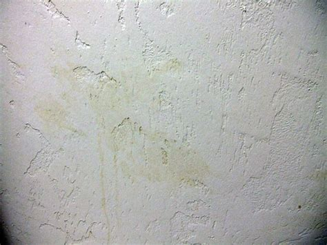 Yellow Stains Bathroom Walls Another Disgusting Yellow Stain On Bathroom Wall Picture