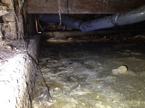 crawl space cleaning san francisco 100 crawl space cleaning san francisco arc water