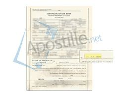 Washtenaw County Marriage License Records County Of Washtenaw State Of Michigan Certificate
