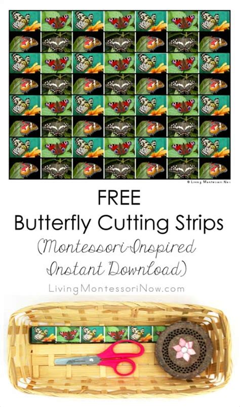 printable montessori cutting strips free butterfly cutting strips montessori inspired instant
