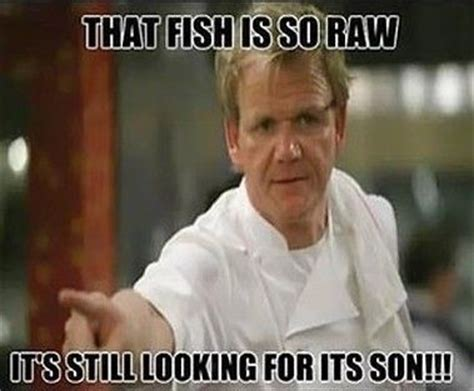 Chef Ramsey Meme - chef ramsay meme gordon ramsay at his finest pinterest
