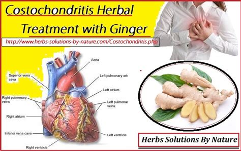 best medicine for inflammation costochondritis herbal treatment with ginger