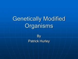 Modified Organism Definition by Ppt Genetically Modified Organisms Powerpoint
