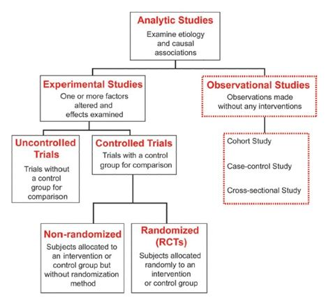 cross sectional observational study big fitness project understanding scientific research 2