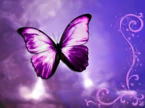 mariposas pics pulg 243 n fotos de mariposas