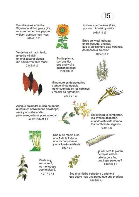preguntas dificiles para veterinarios los duendes y hadas de ludi adivinanzas de plantas