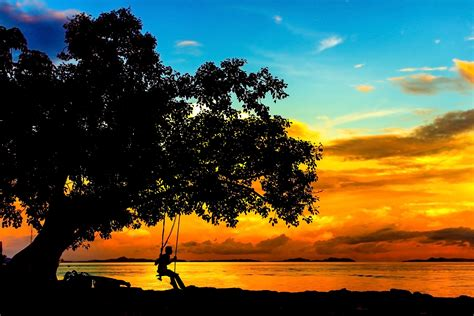 sunset swings 10 personal powerful psychedelic stories written by