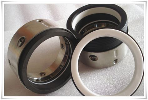 Mechanical Seal As R8 1 as r8 1 component seals asinoseal is a mechanical seal